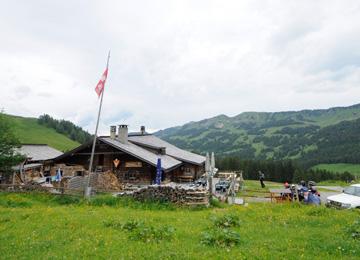 thumbnail_suisse_360_260